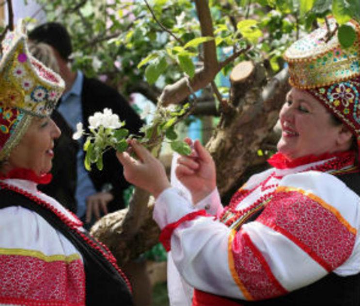 В Воронежском регионе озеленение возрождается от песен,